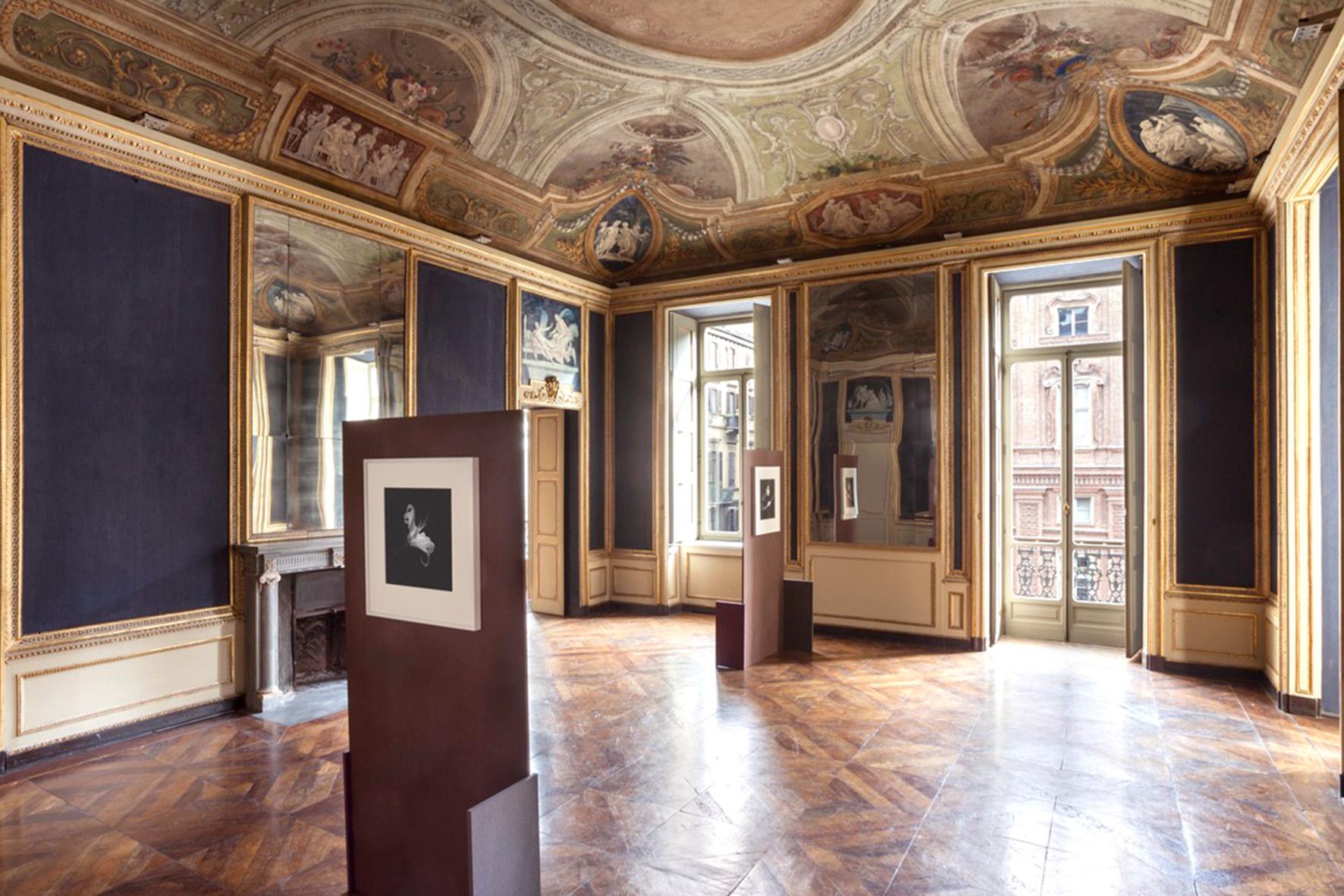 Una delle sale che ospitano la mostra di Robert Mapplethorpe presso la sede della Galleria Franco Noero in piazza Carignano a Torino, foto © aut./FrancoNoero