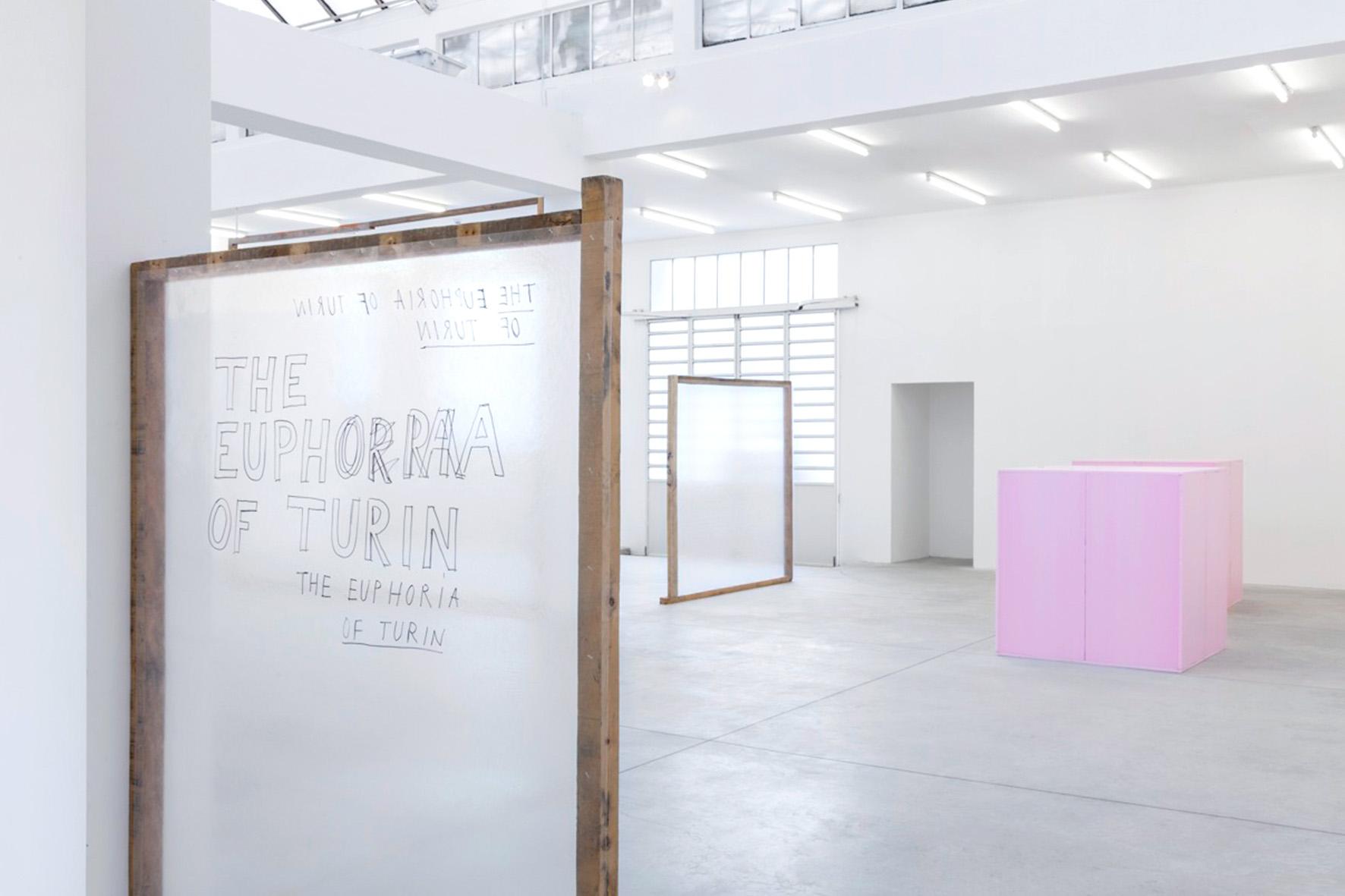 Veduta della mostra personale di Henrik Olesen (in primo piano, l'opera 'The Euphoria of Turin') presso la sede della Galleria Franco Noero in via Mottalciata a Torino, foto © aut./FrancoNoero