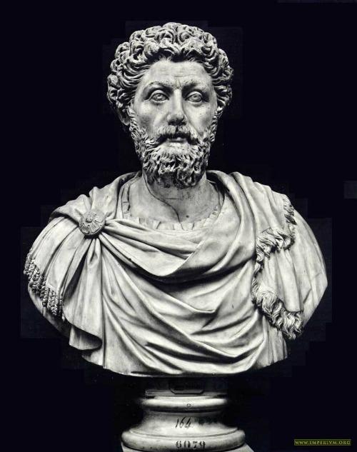 Marco Aurelio Net Worth